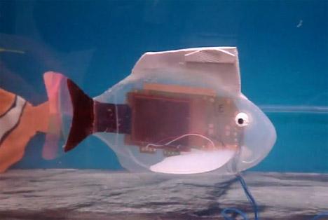 Robot Fish To Take Over The Seas