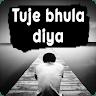 download Tuje Bhula Diya - Broken heart Status & Shayari apk