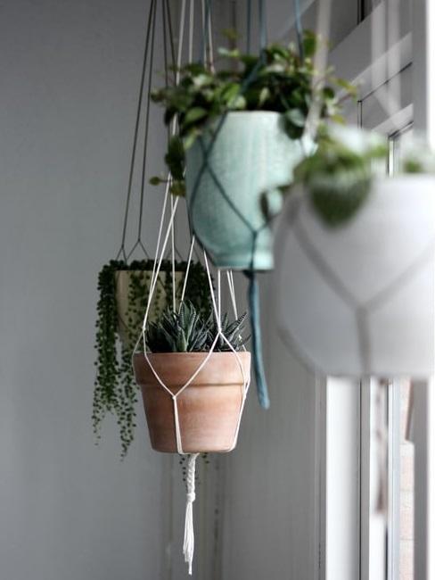 Realizzare delle fioriere fai da te è un buon punto di partenza per restituire ai propri ambienti esterni il rispetto. Vasi Da Appendere Idee Per Interni Ed Esterni Westwing