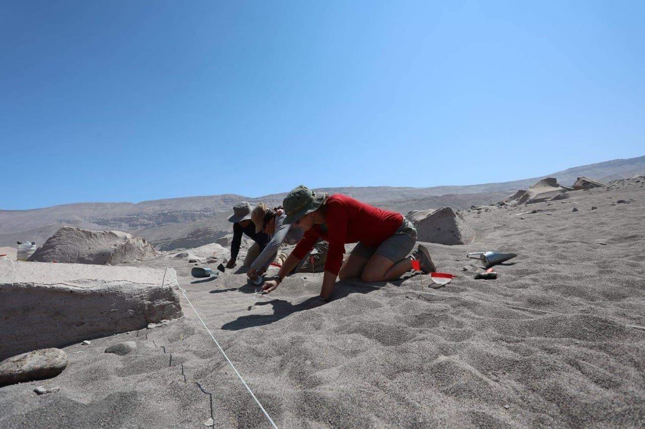 Los trabajos arqueológicos en las ruinas de petroglifos en Toro Muerto