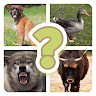 Guess the creature game apk icon