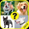 Adivina la Raza de Perro 2019 game apk icon