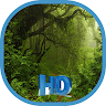 telecharger HD Forest Wallpapers Trees Jungle Backgrounds apk