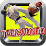 Taekwondo Kick Training app apk icon