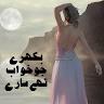 BIKHRAY JO KHAWAB THAY SARAY by Filza Arshad app apk icon