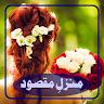 MANZIL E MAQSOOD by S A KHANZADII app apk icon