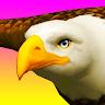 Eagle Ride Apk icon