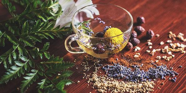 Herbalism: Longevity Herb Recipes - Product Image