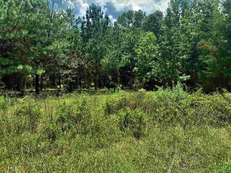 Property for sale at 0 WOODCRAFT ROAD, Madison,  Georgia 30650