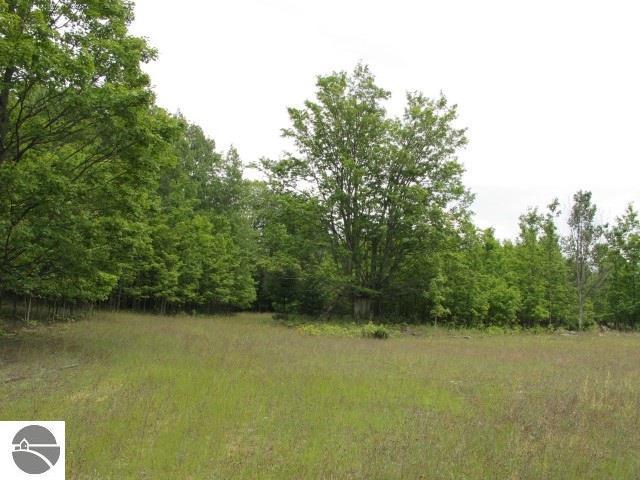 Property for sale at Baatz Road, Maple City,  MI 49664