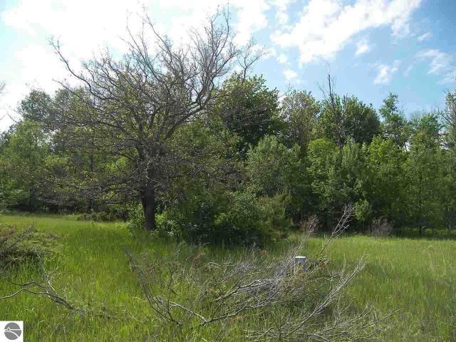 Property for sale at 4068 E Sandy Lane, Cedar,  MI 49621