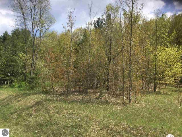Property for sale at Hoxie Road, Cedar,  MI 49621