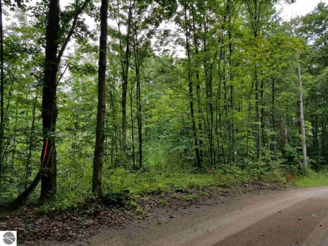 Property for sale at Cate Road, Cedar,  MI 49621