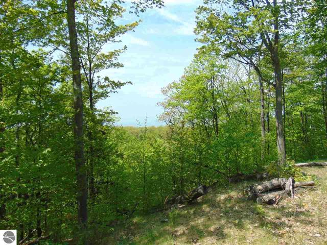 Property for sale at 00 Novotny Road, Leland,  MI 49654