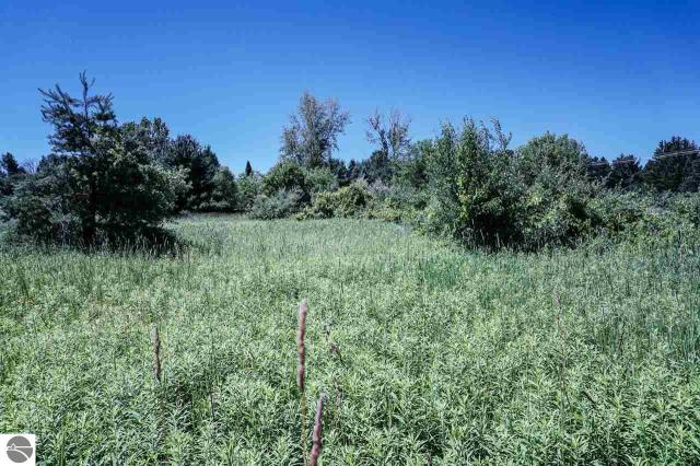 Property for sale at Parcel D S Lake Leelanau, Lake Leelanau,  MI 49653