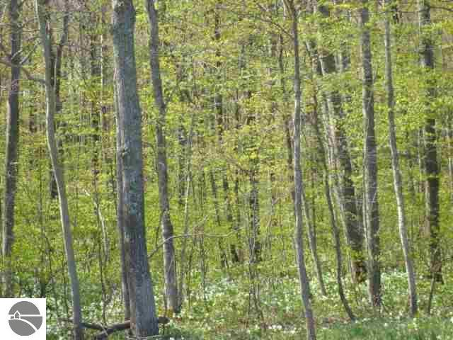 Property for sale at 0000 W Traverse Highway, Maple City,  MI 49664