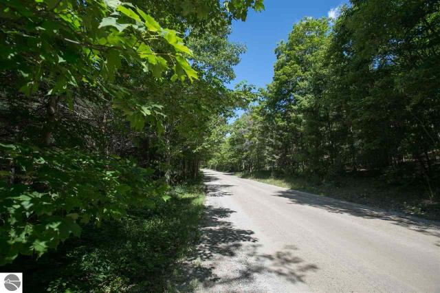 Property for sale at W Cheney Road, Maple City,  MI 49664