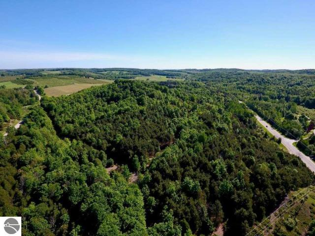 Property for sale at 111 N Sylt Road, Lake Leelanau,  MI 49653