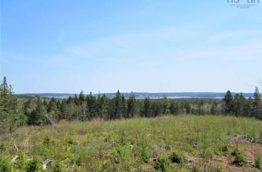 3 lots Highway 331, Dublin Shore, NS B0R 1C0, ,Vacant Land,For Sale,3 lots Highway 331,201712817