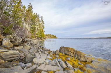 LOT Highway 308, Morris Island, NS B0W 3M0, ,Vacant Land,For Sale,LOT Highway 308,202100595