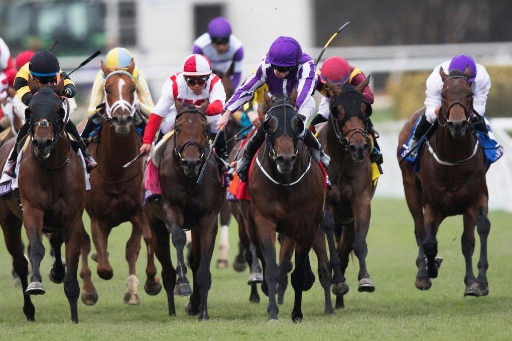 Upi Horse Racing Weekend Preview Mendelssohn Hits Belmont