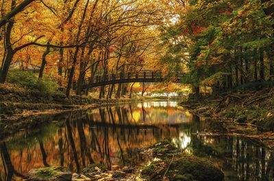 Autumn Reflections in Baegyangsa, South Korea by theoherbots