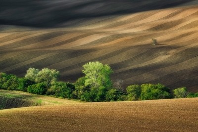 South Moravia - autumn Follow me: https:--www.instagram.com-kuba.koziol.fotografia- by theoherbots
