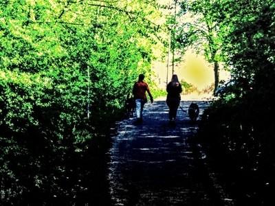 Welkom in Tienen My spring walk 10-04-2020 My walk along De Grote Gete in Tienen Belgium Sincerely Theo-Herbots-Photography https:--groetenuittienen.blog- by theoherbots