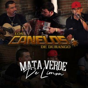 Los Canelos De Durango - Mata Verde de Limon (Single 2020)