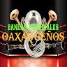 radio bandas regionales Oaxaqueños Apk icon