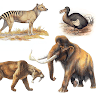 download Extinct animals and endagered species!Rare animals apk