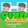 download Find the Twins (Bang Chan - Stray Kids) apk