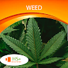 download Weed Wallpaper apk