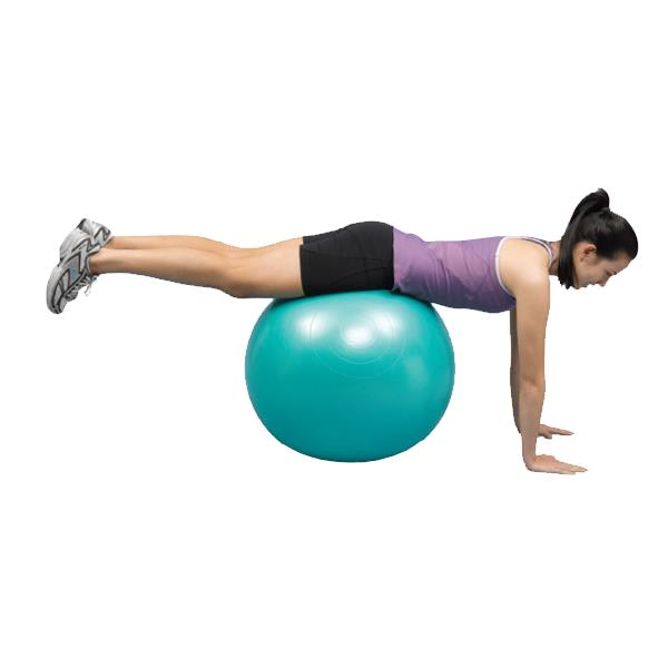 Norco Exercise Ball  Fitness  Exercise