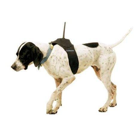 Garmin DC30 GPS Dog Collar