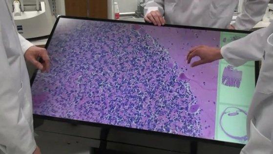 Multi-touch microscope