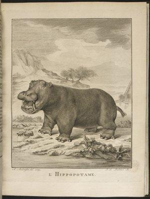 Google British Library