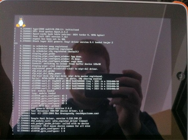 iPad Linux