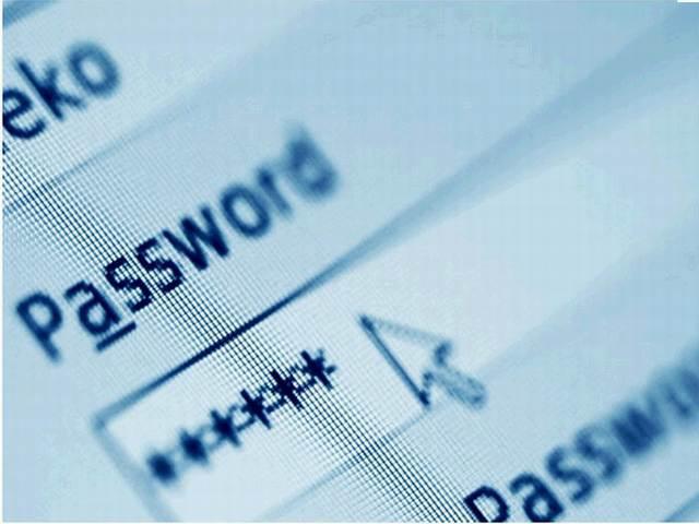 google-password-portable