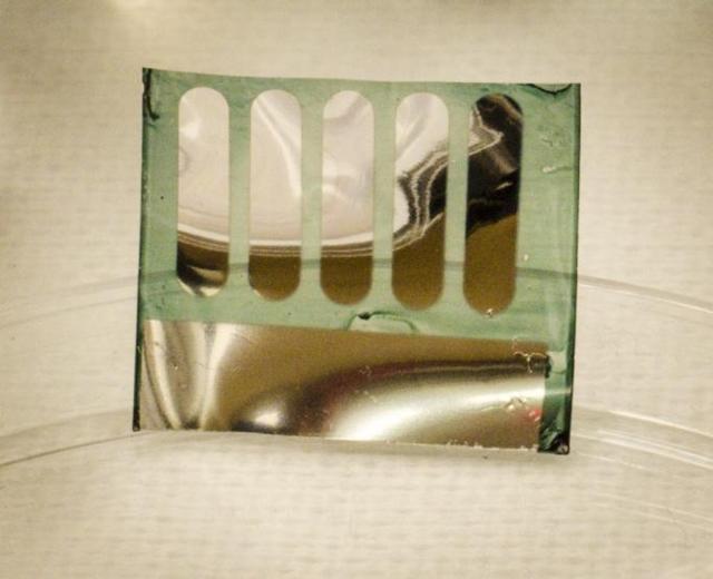 green-solar-cell