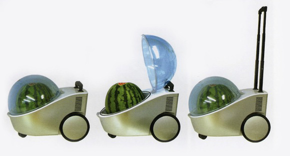 portable-watermelon-fridge-tamachan