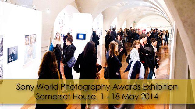 130367614869482500_Exhibition