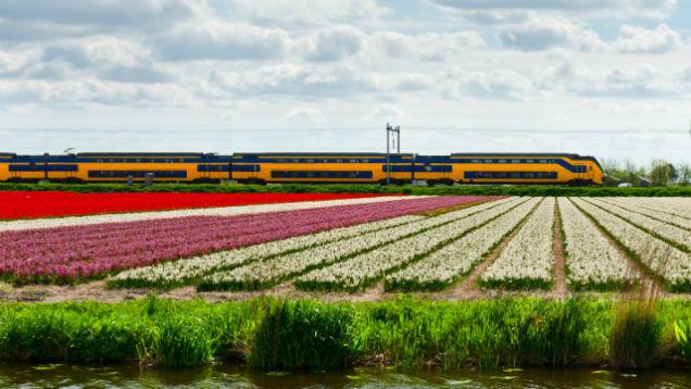 dutch-railway