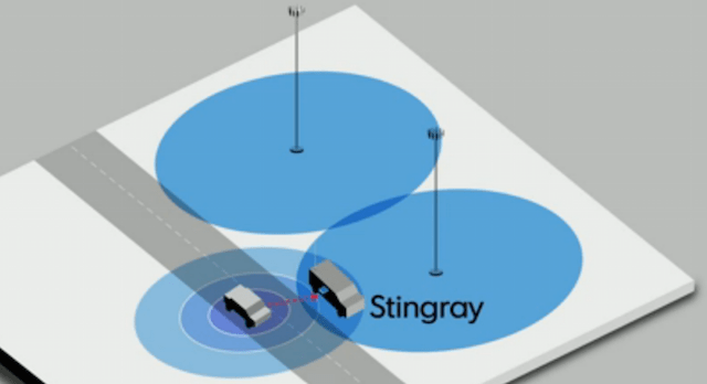 stingray-use