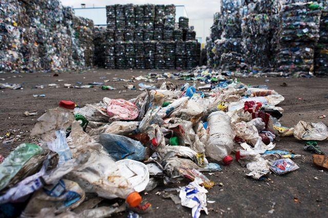 plastic-bacteria