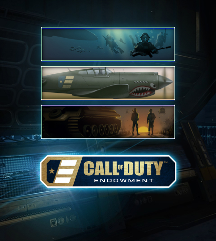 call-of-duty-endowment-cards