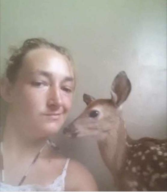 baby-deer-selfie