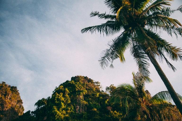 Railay Princess Resort & Spa - muito verde ao redor