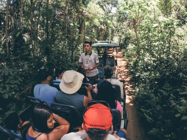 Guia nos explicando detalhes sobre a mata nativa