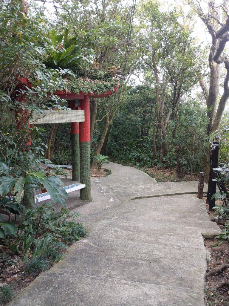 紅淡山步道|健行筆記